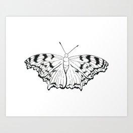 Tortoise Shell Moth Art Print