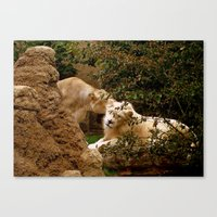 cuddle Canvas Prints featuring Cuddle by Lindsey Hart Photography