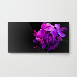 Purple Curls Metal Print
