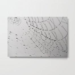 Morning Dew Tiara Metal Print