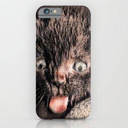 The HAKA - Kitten style iPhone Case