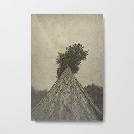 Beautiful bark Metal Print