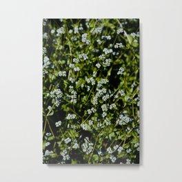 New Bloom Floral Series Metal Print