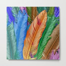 Feather of Colors Metal Print