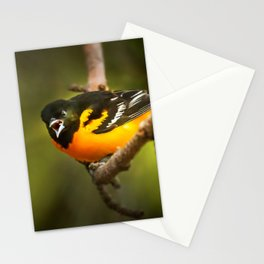 Oriole Speaks Stationery Cards