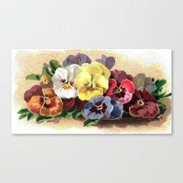 Vintage Pansies Canvas Print