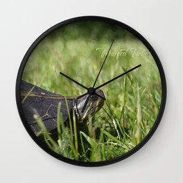 Painted Turtle Wall Clock