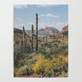 Arizona Spring Poster