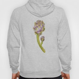 Artichoke Botanical Watercolor Hoody