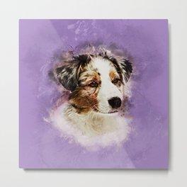 Australian Shepherd - Aussie Puppy Metal Print