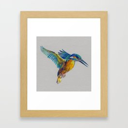 Kingfisher 7 Framed Art Print