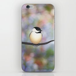 black capped chickadee on a branch iPhone Skin
