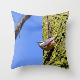 Eurasian Nuthatch Throw Pillow