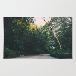 Journey through a forest road Rug