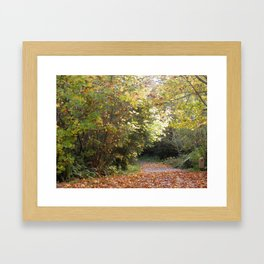 Autumn Biketrail Framed Art Print