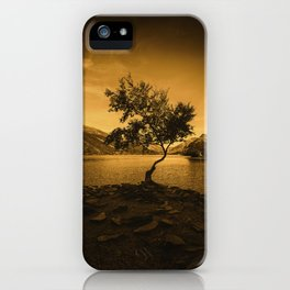 Tree at Llyn Padarn iPhone Case