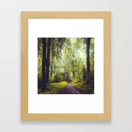 Dreamy Forest Framed Art Print