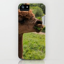 Artemis Alpaca iPhone Case