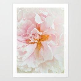 Flower Power II Art Print