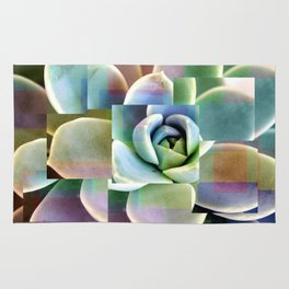 Succulents collage Rug