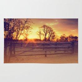 February winter morning Rug