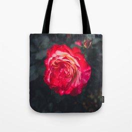 Night Rose 2 Tote Bag