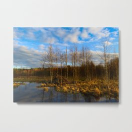 Spring evening on the forest river Metal Print