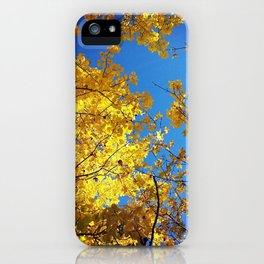 not all that glitters is gold. iPhone Case