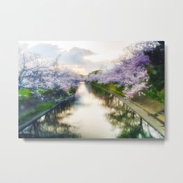 Cherry Blossom Japan Metal Print