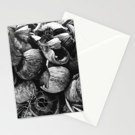 Coconut Shell Black and White Stationery Cards