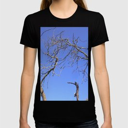 Pigeon in a dead tree T-shirt