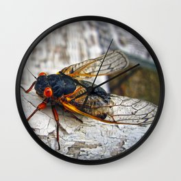 Red Eyed Cicada Wall Clock