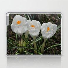 Three Little White Flowers Laptop & iPad Skin