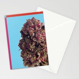 Nugs Stationery Cards