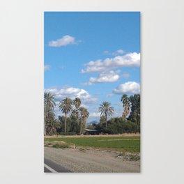 Zona Palm Trees Canvas Print