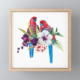 Exotic parrots Framed Mini Art Print