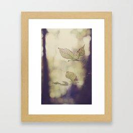 Leaves and Webs Framed Art Print