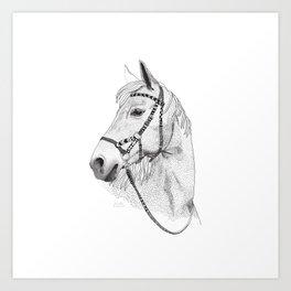 Inka horse Art Print