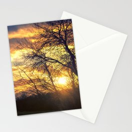 Sunshine Scattered Stationery Cards
