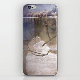 Equestrian iPhone Skin