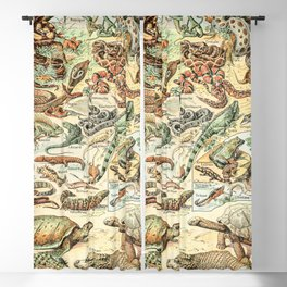 Reptiles II by Adolphe Millot // XL 19th Century Snakes Lizards Alligators Science Textbook Artwork Blackout Curtain