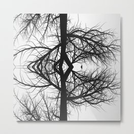 Reflection of the tree Metal Print