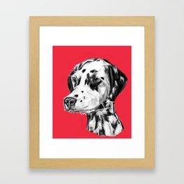 Dalmatian Red  Framed Art Print