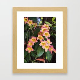 Tangerine Beauty Cross Vine Cascade Framed Art Print