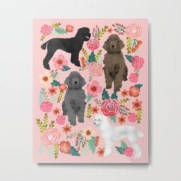 Poodle mixed coat colors brown poodle black poodle white poodle pet portrait dog art animal Metal Print