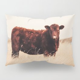 Red Angus Cow Art Pillow Sham
