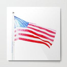 flag on white Metal Print