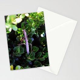 greenspell pastor Stationery Cards