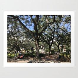 Tree Square Art Print