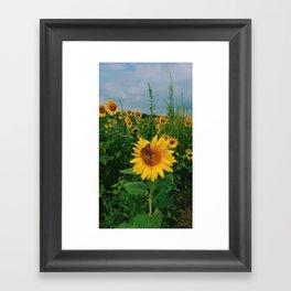 Ladies Love Sunflowers Framed Art Print